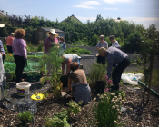 The Edible Landscape Project