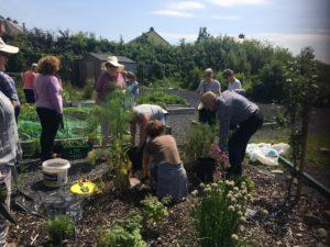 The Edible Landscape Project